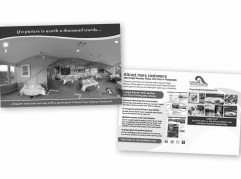 Force 4 Photography Direct Mail Postcard